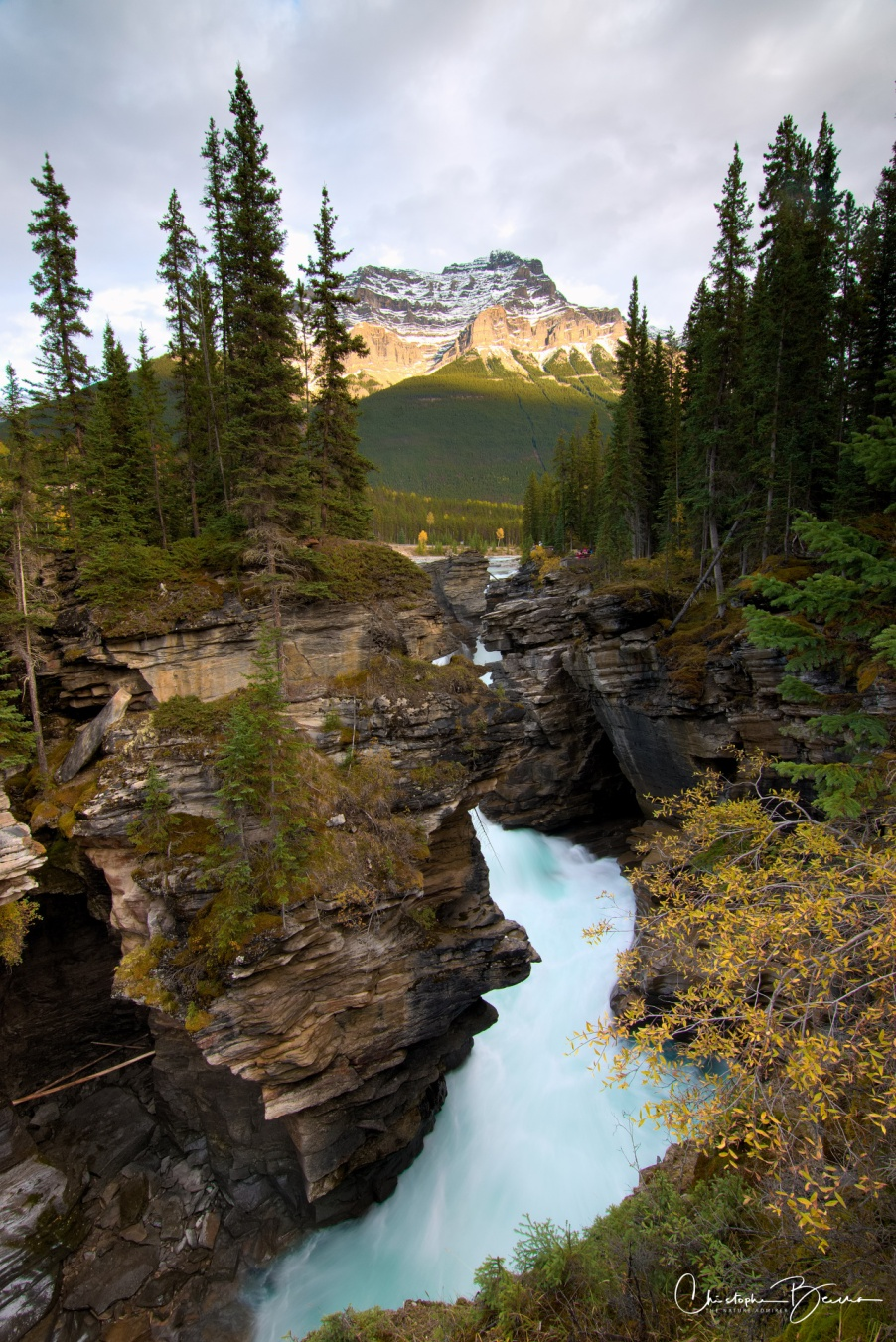 The falls at Athabasca. A hint of the green color can be seen in the water that moves just so fast through there.