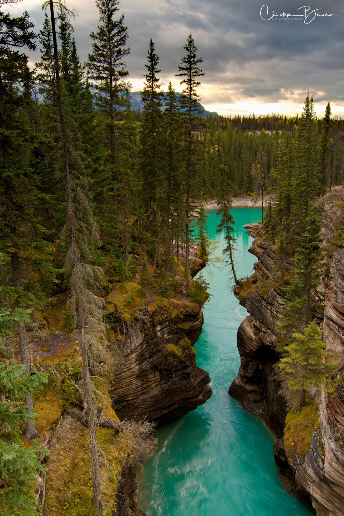 Just after the falls, the Athabasca river continues its course through the canyon.