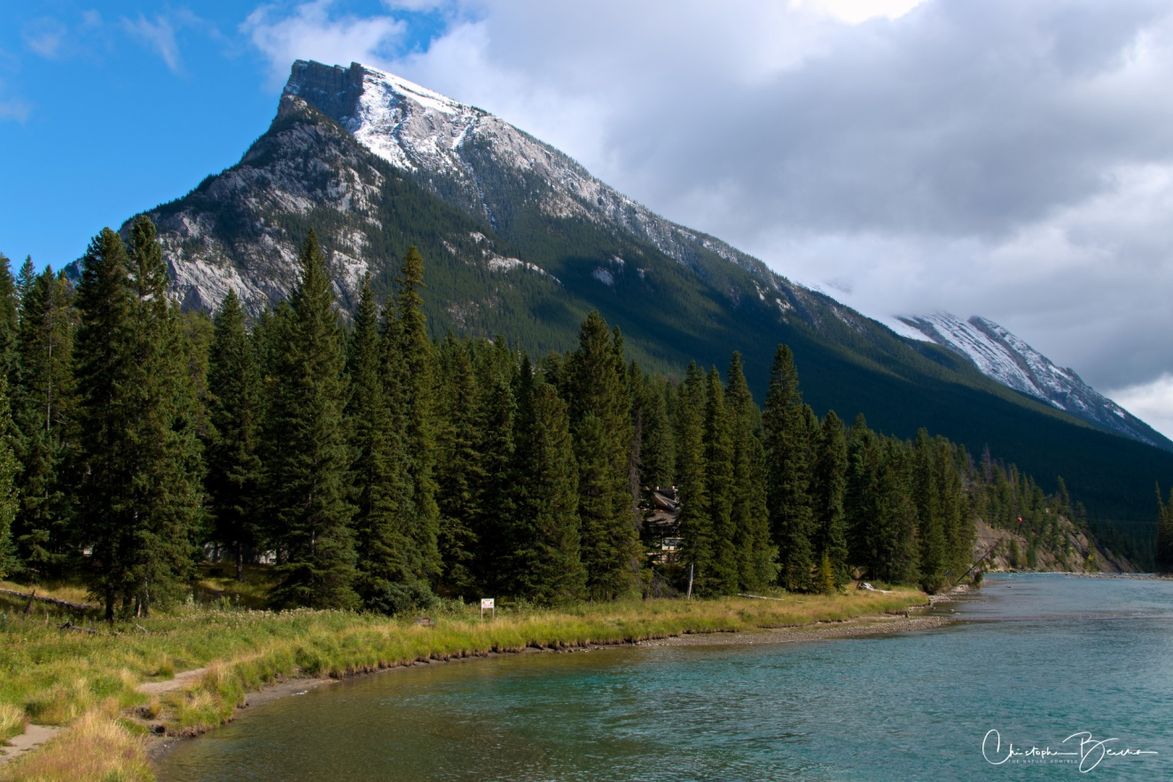 One of the many sides of Mount Rundle, seen from a pedestrian bridge that crosses Bow River. You can enter the bridge from Bow Trail, which goes by the side of the river.