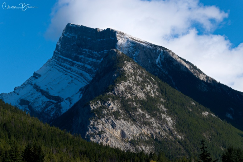 Close up view of Mount Rundle. From this side, it is covered in forest up to some elevation, and then is just rock covered by snow during late autumn and winter.