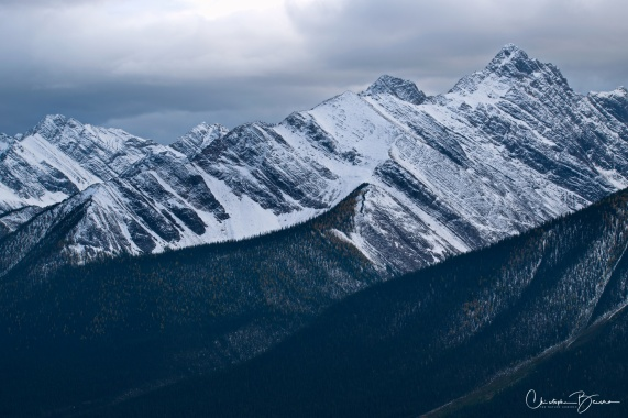 More ice-covered peaks. At a glance, the hard line that separates the forest from the barren rock strikes me.