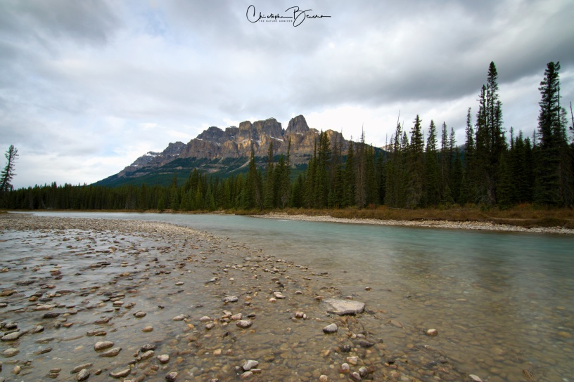 On this area, Bow River makes a turn that takes it straight into Banff.
