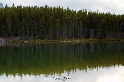 I am fascinated by the trees reflecting into the lake surface. The water is so calm, that reflections are crystal clear.