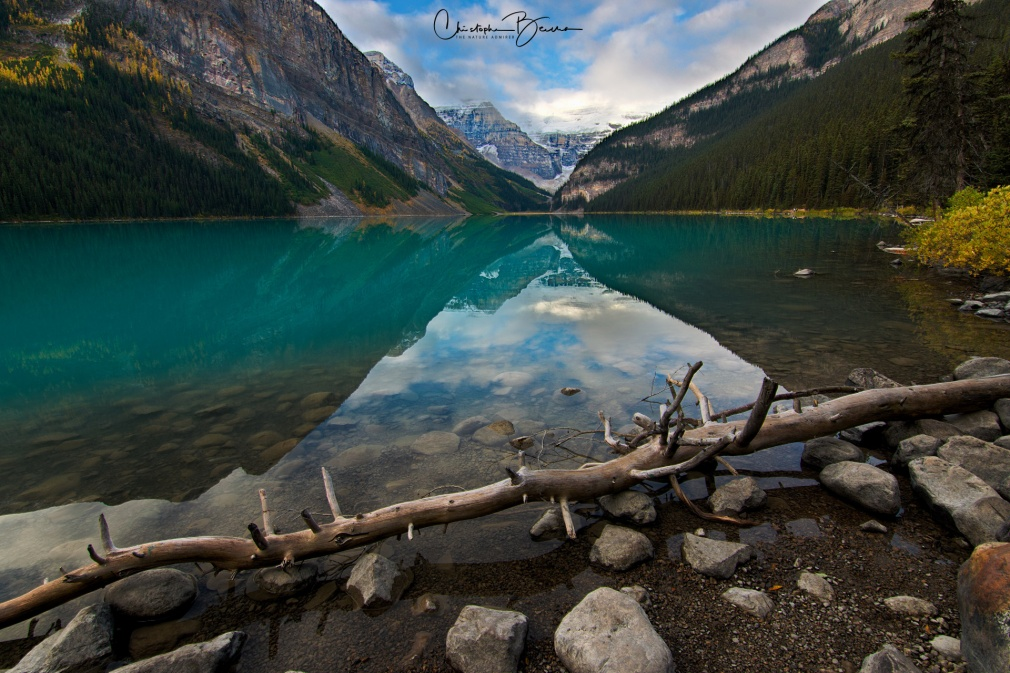 In this wide view, in the upper center part of the frame, the previously shown glacier stands out. But the center stage is for Lake Louise's turquoise waters and the many rocks that can be found on its edge. And the fallen tree of course.
