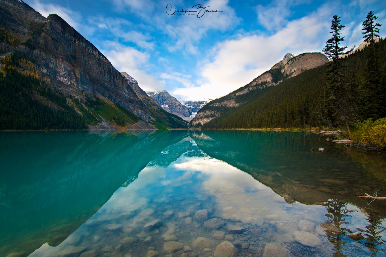 This is almost perfect symmetry. Together with its turquoise coloration, its reflective surface is a wonder to witness.