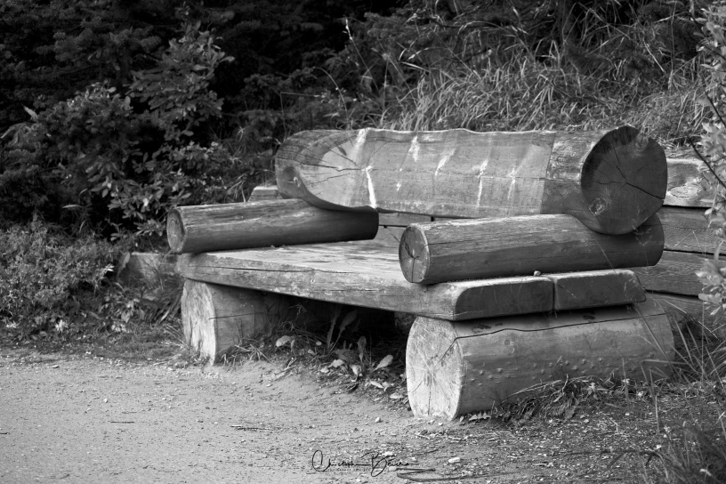 Reinterpretation from Sulphur Mountain. A different kind of bench, but the same scene: No one is there to enjoy the beauty. It makes me feel desolated. It reminds me that we gotta slow down and contemplate. Our world spins too fast.